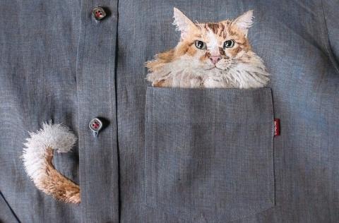 Искусная вышивальщица подсаживает котиков в карманы своего сына