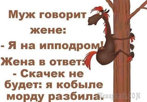 Веселые анекдоты в картинках)