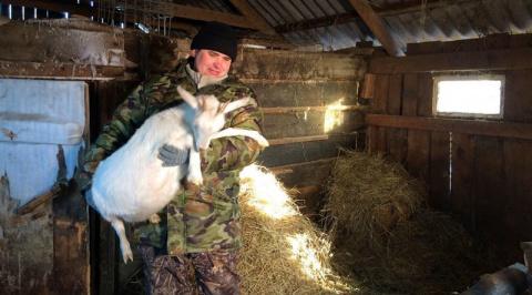 Фермер из Зауралья, выращивающий коз, решил бороться в суде против козлов