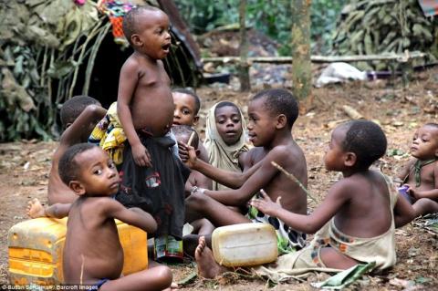 Как живут африканские пигмеи