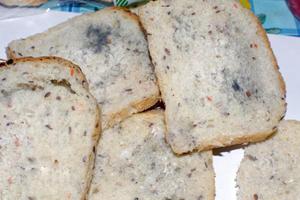 Хлеб с голубой плесенью