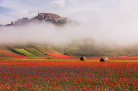 25 потрясающих снимков о том, что мир вокруг постоянно меняет цвет