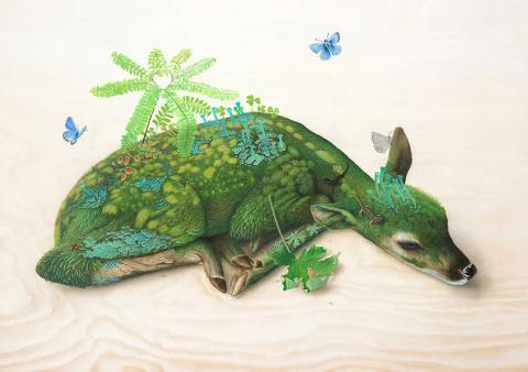 Флора и фауна в картинах Тиффани Бозик