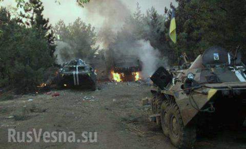Крысиная возня в украинском …