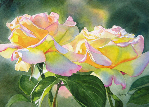 Цветочные акварели Sharon Freeman