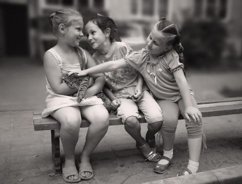 Дружба не может быть на всю …