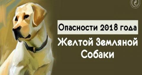 2018 ГОД ЖЕЛТОЙ ЗЕМЛЯНОЙ СОБ…