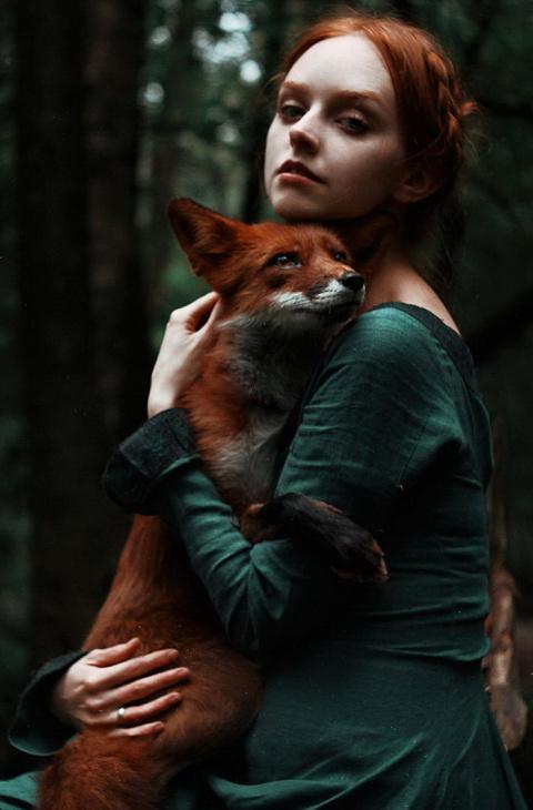 Две лисицы: серия портретов Александра Бочкарева