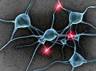 Мозг способен противостоять болезни Паркинсона, но ему нужно немного помочь