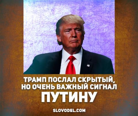 Трамп послал скрытый, но очень важный сигнал Путину