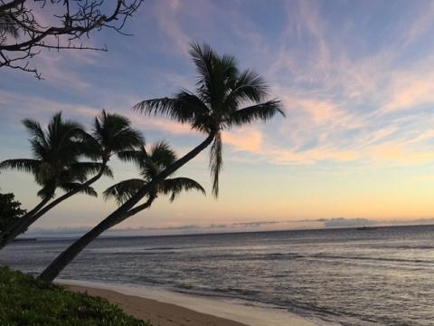 На Гавайях готовятся к ядерн…