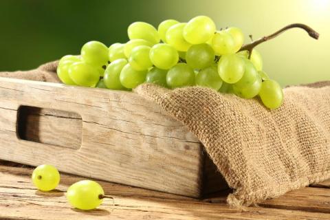 Винограду - тьму и прохладу! Как сохранить свежие ягоды до весны