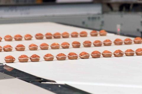 Санкт-петербургский холдинг выпустил высокоскоростную линию для упаковки миникексов
