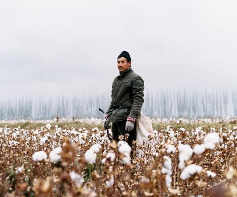 Синьцзян-Уйгурский автономный район Китая в фотографиях Patrick Wack