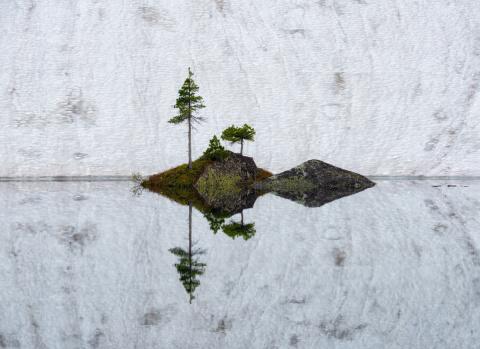 19 лучших фотографий природн…