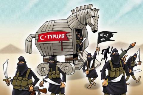 Турция и Халифат: война по согласию