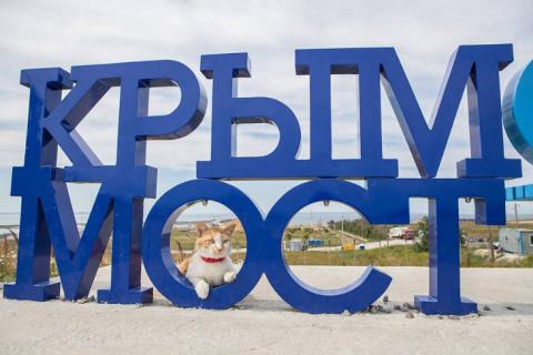Крымский мост: как продвигае…