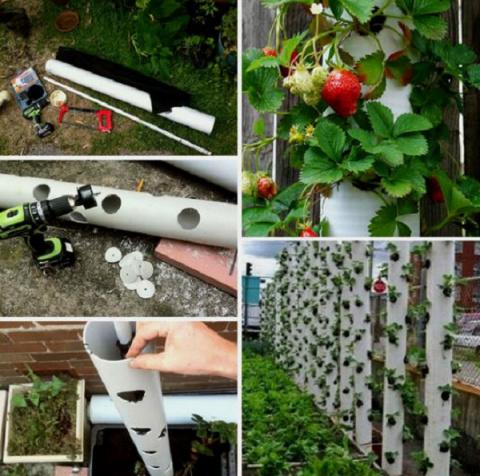 32  идеи использования ПВХ-труб для дачи и дома!