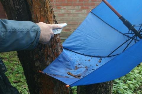 Старый зонтик послужит в саду