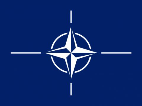 Казусы НАТО: почему армия Ал…
