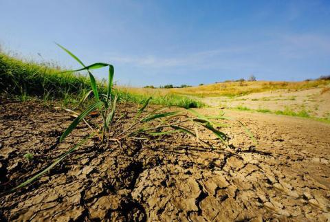 Как обновить и улучшить глинистую почву?