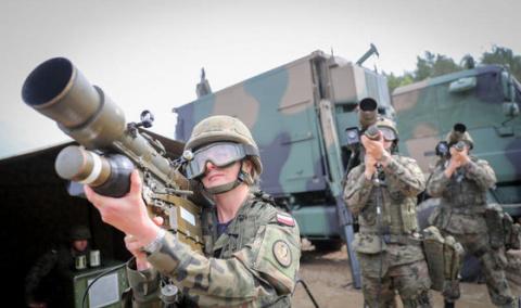 Войска НАТО штурмовали дачу прибалтийского фермера