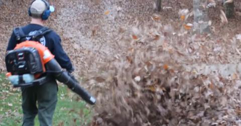 Мужчина вышел собирать листь…