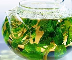 Как облегчить кашель с мокротой с помощью 5 лекарственных растений