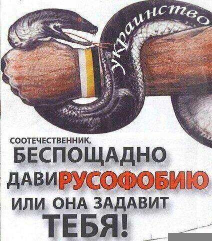 1. Русофобия российской интеллигенции   2. Русофобия 2.0 готовит Запад к войне с Россией 3. Основные русофобские мифы Запада 4. Русофобия сильнее логики