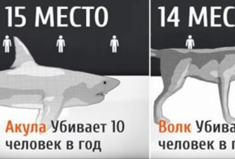 15 самых опасных для человек…