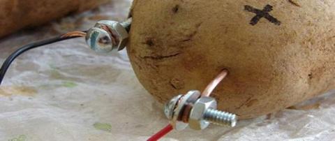 Знали ли Вы, что картофель способен освещать комнату целый месяц?