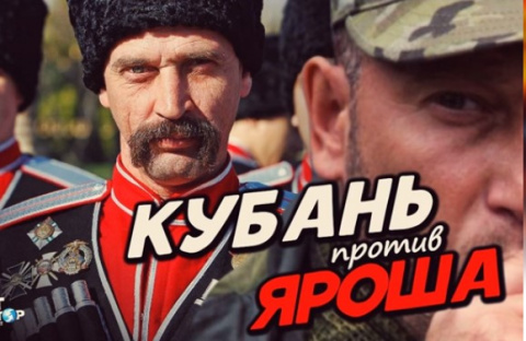 Жителей Кубани спросили: Как…