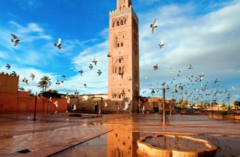 Десять фактов о Марокко, кот…