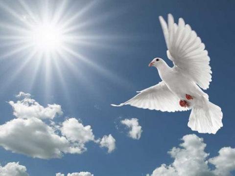 Благовещение Пресвятой Богор…