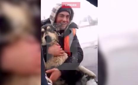 """""""Черныш, с*ка, держись!"""" Карельские дорожники спасли собаку из ледяного озера"""