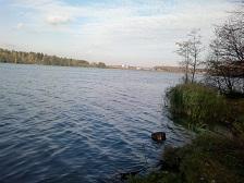 48. ПОДСКАЖИТЕ.... слышала что есть в Купавне НЕ платное озеро