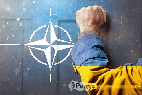 В НАТО испугались, что Украи…