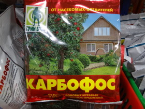 """Недельный обзор сайта """"Домоводство Приусадебное садоводство"""""""