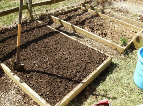 Почва: подготовка участка к …