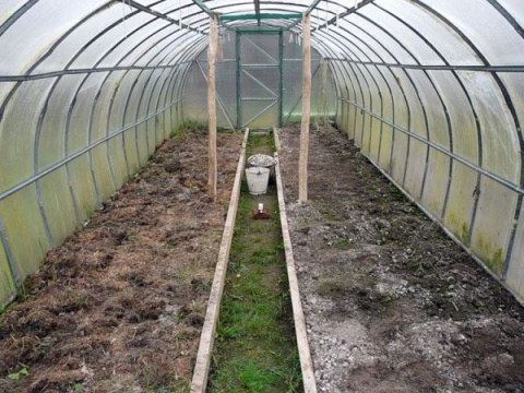 Обработка теплицы после сбора урожая: дезинфекция почвы и другие мероприятия