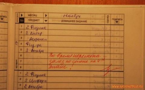 Судя по записям в дневниках, школьники пошли креативные