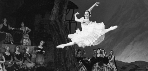 Ох, уж эти балерины! История…