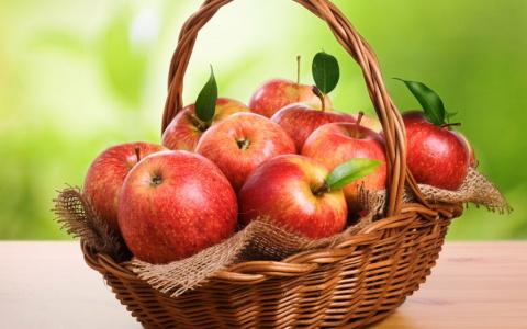 Яблочный бум: лучшие сорта для вашего сада