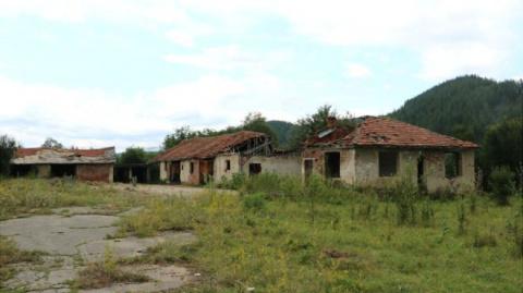 Почему болгар становится все меньше?