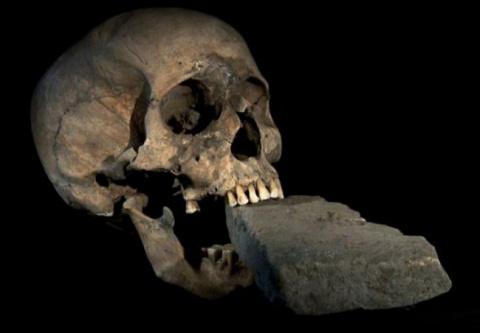 Находки археологов, которые …