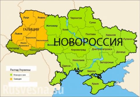 «Крым уже уехал, и мы уедем со своими территориями», — нардеп от Запорожья шокировал неонациста Корчинского (ВИДЕО)