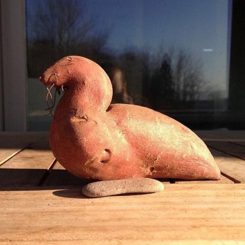 Плоды странной и забавной формы