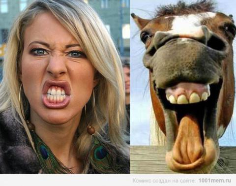 Мстя обиженной лошади