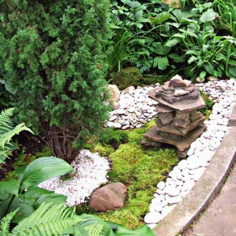 Садовая культура Японии. Сад мхов