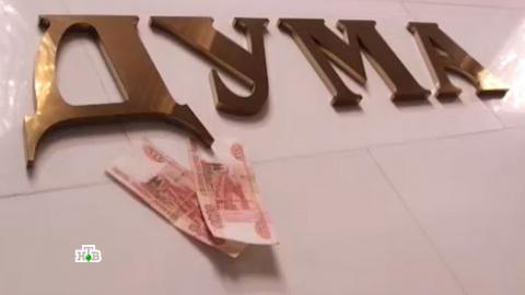 В Госдуме оценили идею плати…
